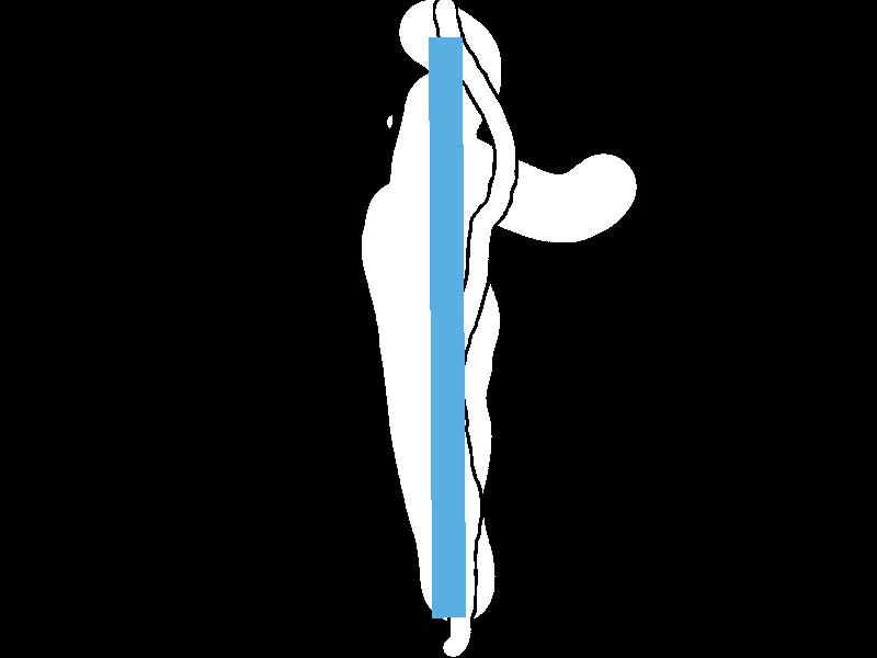 blue-line-divider